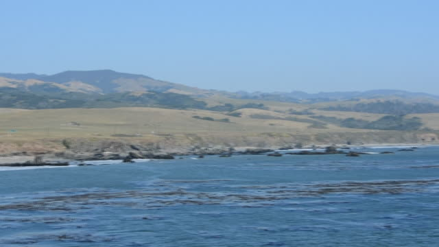 from the water at the coastal mountain range of california and coastline, cars can be seen driving on state route 1, highway in california, pacific... - kelp stock videos & royalty-free footage