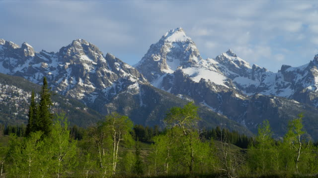 zoom out from wide to medium shot clouds over snowy grand teton in teton range with green trees in foreground, grand teton national park, wyoming - grand teton stock-videos und b-roll-filmmaterial