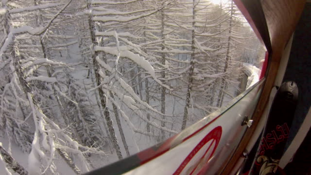 pov from within chair lift as it passes snow covered trees.  - 1920x1080 - inquadratura dalla sciovia video stock e b–roll