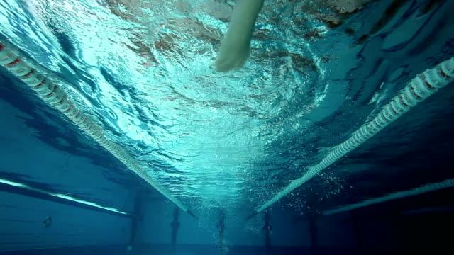 vídeos de stock, filmes e b-roll de frente nado crawl - competição