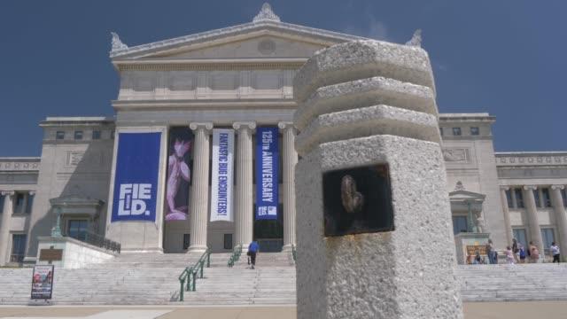 front facade of the field museum, chicago, illinois, united states of america, north america - 新古典派点の映像素材/bロール