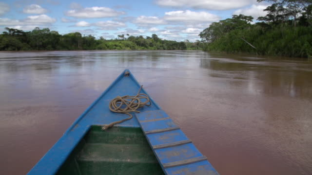 Front of boat POV of Amazon River, Rainforest and blue sky