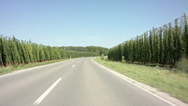 front view / chasing automotive backplate - driving in the worlds largest brewing hops planting area of hallertau / holledau in bavaria. - car point of view stock videos & royalty-free footage