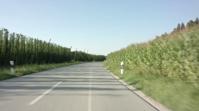 vídeos y material grabado en eventos de stock de front view / chasing automotive backplate - driving in the worlds largest brewing hops planting area of hallertau / holledau in bavaria. - carretera vacía