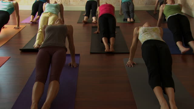 front view of a women's yoga class - see other clips from this shoot 1149 stock videos & royalty-free footage