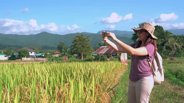 vidéos et rushes de vue de face d'une femme asiatique prenant une photo d'une oreille de riz, marchant sur la crête de la rizière sous le coucher du soleil dans une scène agricole non urbaine, le nord de la thaïlande avec un sentiment excité, émotion positive - non urban scene