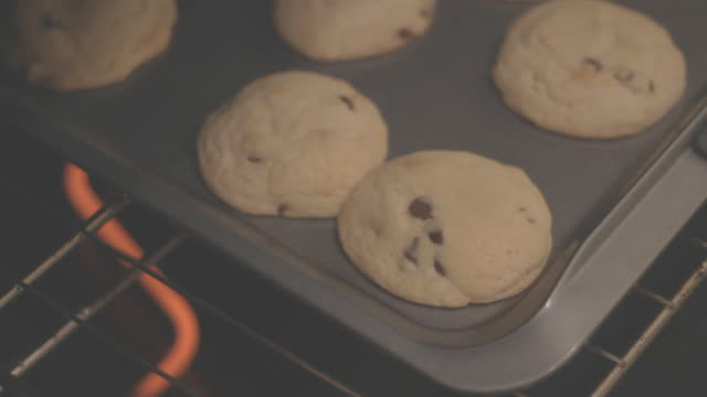 front view of cookies baking in oven - chocolate chip cookie stock videos and b-roll footage