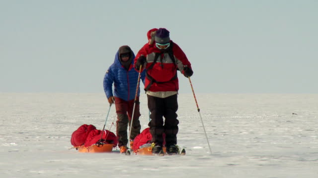 ws pov front view of two people on skis pulling sleds across snowy landscape / union glacier, heritage range, ellsworth mountains, antarctica  - 寒帯気候点の映像素材/bロール