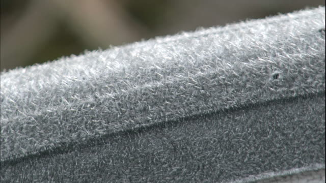 Frost coats a truck tire in Mishima, Japan.