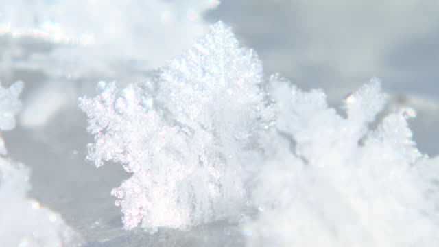 frost flower, the ice crystals grown on lake ice - ice crystal stock videos and b-roll footage
