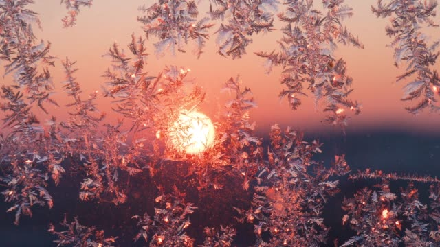 frost on the glass at sunrise - ice crystal stock videos and b-roll footage