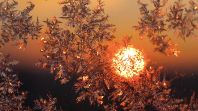 frost on the glass-sunrise - frost stock videos & royalty-free footage