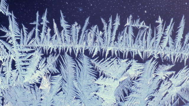 CU Frost pattern on window pane / Tweed, Ontario, Canada