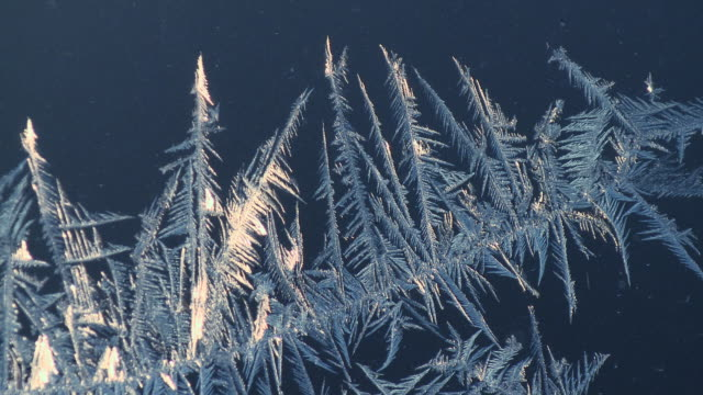 cu frost pattern on window pane / tweed, ontario, canada - frost stock videos & royalty-free footage