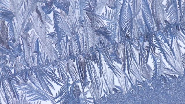 CU Frost pattern on window / Tweed, Ontario, Canada