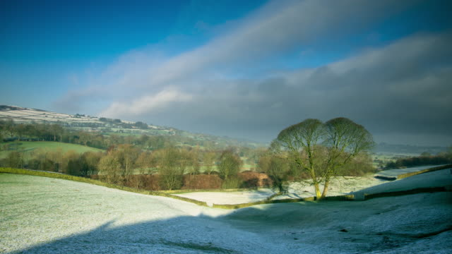 frosty day in foulridge - timelapse - bare tree stock videos & royalty-free footage