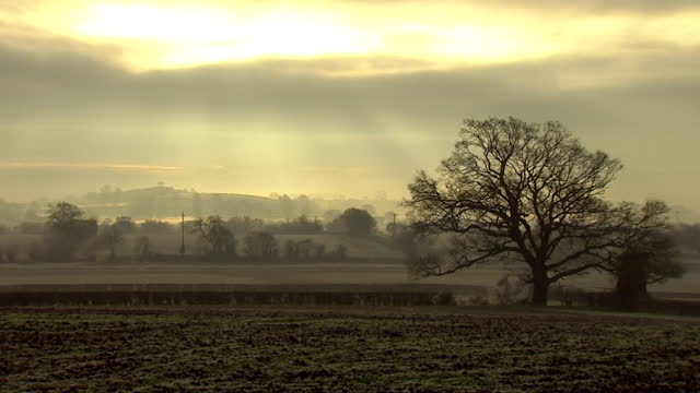 frosty scenic landscape, somerset - winter stock videos & royalty-free footage