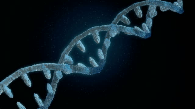 frozen dna helix - chromosome stock videos and b-roll footage