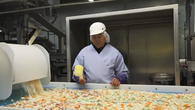 frozen food inspection assembly line food packaging frozen vegetables norpac food manufacturing on june 06 2013 in salem or - セーラム点の映像素材/bロール