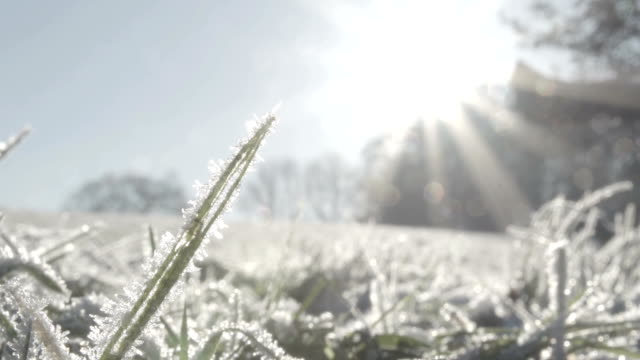 frozen ground - frost stock videos & royalty-free footage