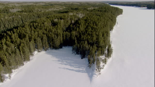 a frozen inlet borders a boreal forest in canada. available in hd. - boreal forest stock videos & royalty-free footage