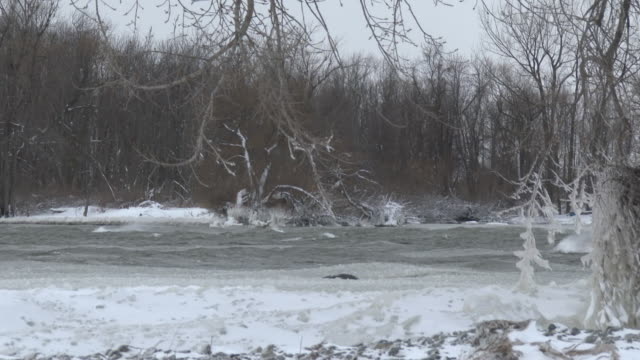 frozen lake ontario shoreline - scott mcpartland stock videos & royalty-free footage