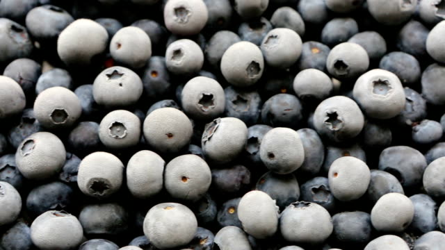 frozen organic fruit blueberries - frozen stock videos and b-roll footage
