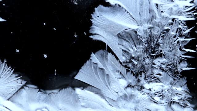 frozen pattern
