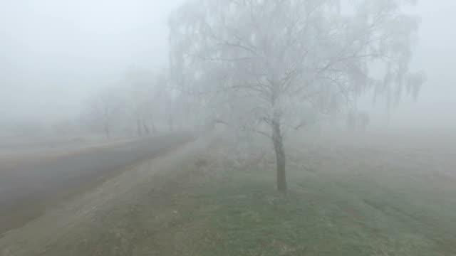 frozen road near field in winter morning - animal crossing sign stock videos & royalty-free footage