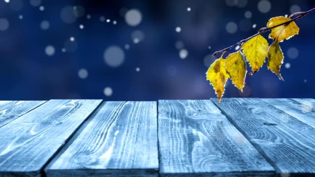 vidéos et rushes de frozen table en extérieur-bouclables - branche partie d'une plante