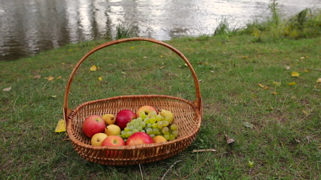 fruit basket - picnic basket stock videos & royalty-free footage