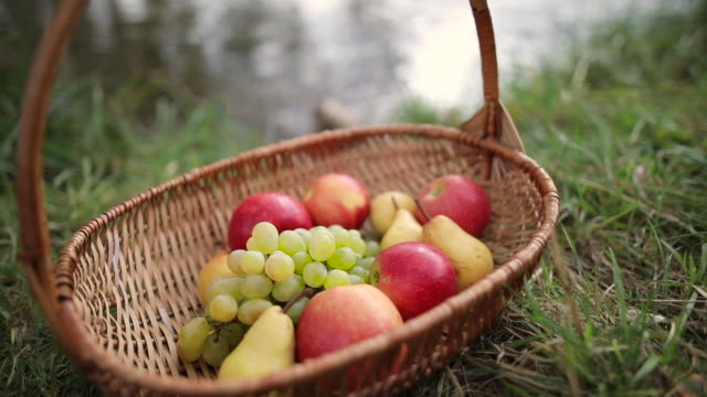 fruit basket - fruit bowl stock videos & royalty-free footage