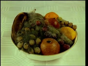 vídeos y material grabado en eventos de stock de t/l fruit bowl - rotting - pudrirse