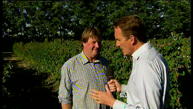 fruit farmers say lack of rain has affected quality of produce england kent orpington int reporter to camera iain morrison interview sot cutaways... - イングランド ケント点の映像素材/bロール