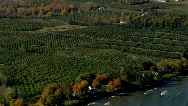 stockvideo's en b-roll-footage met fruit boerderijen - luchtfoto - new york, wayne county, verenigde staten - ontariomeer