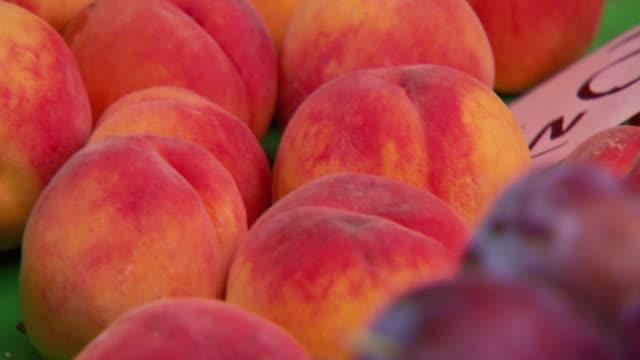 fruit on market - plum stock videos & royalty-free footage