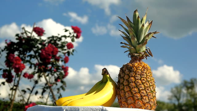 fruits decoration - pineapple stock videos & royalty-free footage