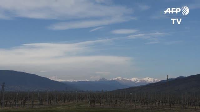 fueron los primeros vitivinicultores de nuestro planeta y ahora los georgianos quieren volver a serlo pero en marte - planeta stock videos & royalty-free footage
