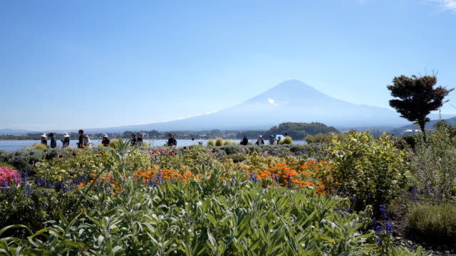 fujisan landscape with crowd at kawaguchiko lake - satoyama scenery stock videos & royalty-free footage