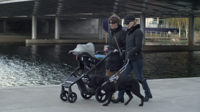 full length of female blind friends walking with dog and baby stroller by lake - visual impairment stock videos & royalty-free footage