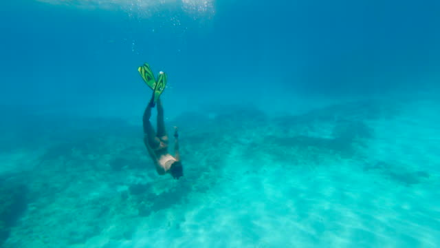 full length of female tourist snorkeling while waving in blue sea, young woman exploring while swimming in water - montego bay, jamaica - weitwinkelaufnahme stock-videos und b-roll-filmmaterial