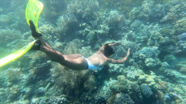 full length of young woman snorkeling over coral reef in turquoise sea - wakatobi regency, indonesia - weitwinkelaufnahme stock-videos und b-roll-filmmaterial