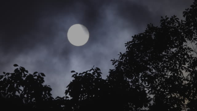 full moon and clouds flowing / suncheon-si, jeollanam-do, south korea - 宇宙・天文点の映像素材/bロール