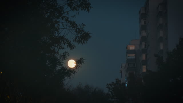 ws full moon at night, beijing, china - full moon stock videos & royalty-free footage