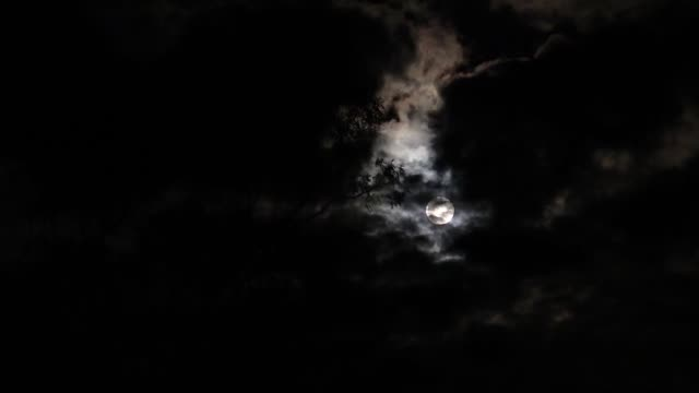 full moon casting light on a cloudy night sky - full moon stock videos & royalty-free footage