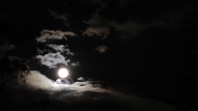 full moon casting light on a cloudy night sky - romantic sky stock videos & royalty-free footage