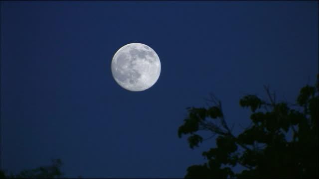 full moon in night sky - full moon stock videos & royalty-free footage