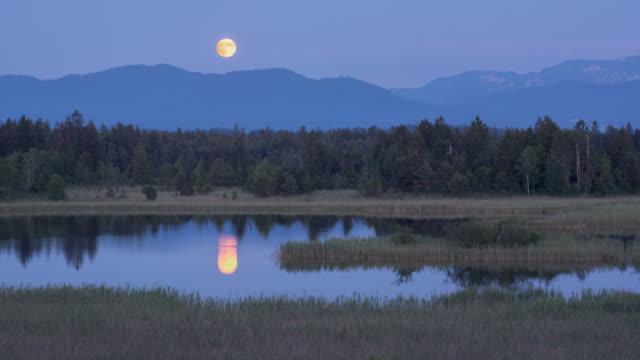 full moon landscape - リフレクション湖点の映像素材/bロール