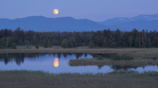 vídeos de stock e filmes b-roll de full moon landscape - reflection