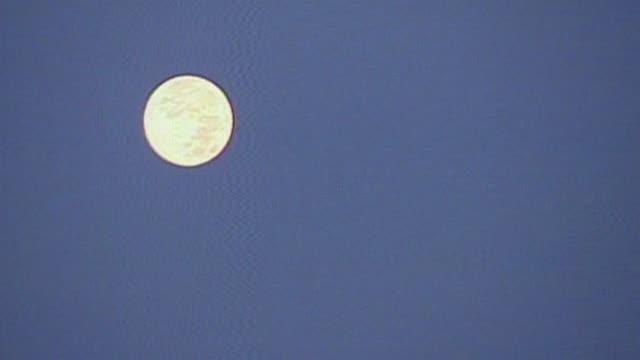 full moon lowering in the sky on august 20 2013 in harrisburg pennsylvania - pennsylvania stock-videos und b-roll-filmmaterial